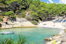 Cala Falcó, un idílico enclave natural entre zonas turísticas
