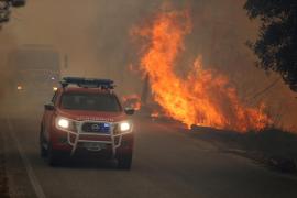 Al menos 41 heridos a causa de varios incendios forestales en Portugal
