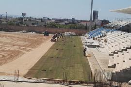 Comienza la instalación del césped en el Estadi Balear