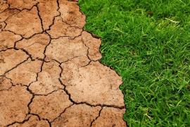Los recursos del planeta para todo el año ya se han agotado