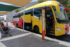 El Govern adjudica el servicio de buses de Mallorca y renovará toda la flota en diez años