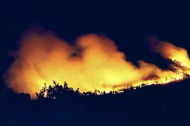 Cuatro décadas del gran fuego que arrasó Sant Salvador y ses Comunes