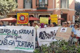 El Ajuntament de Palma se quita responsabilidad en la inspección de la plaza de toros