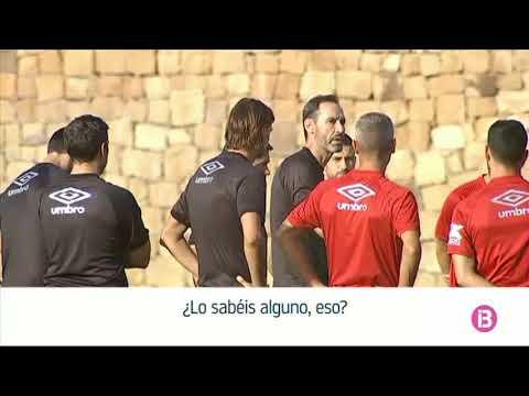 La espectacular bronca de Vicente Moreno a los jugadores del Mallorca
