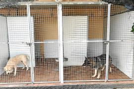 La policía encierra a la Unidad Canina para dejar sitio al depósito de coches de Son Toells