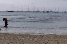 Sant Josep habilita un canal de entrada para embarcaciones en ses Salines