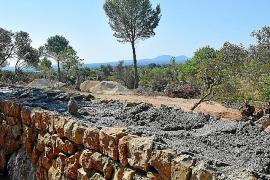 El Consell ordena paralizar las obras en los 'marges' del Camí romà en Binissalem