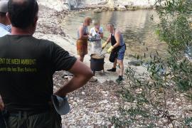 Un grupo de personas se pone a cocinar en Cala Figuera durante una jornada de alto riesgo de incendio