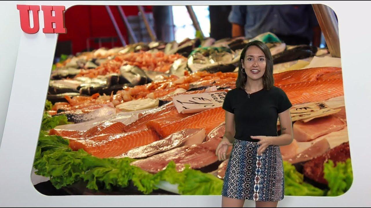 ¿Cómo afecta el mercurio del pescado a nuestro organismo?