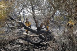 Alarma por un incendio forestal en Es Trenc