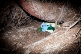 Los zulos de la venta ambulante en el Parque Natural de ses Salines, en imágenes (Fotos: Daniel Espinosa).