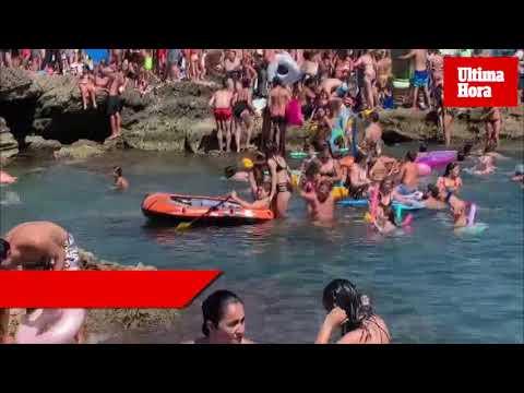 La playa de Can Picafort se tiñe de amarillo con la suelta de patos
