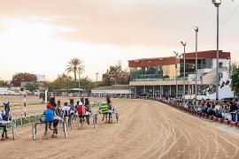 El Ajuntament de Manacor reúne a los accionistas del hipódromo para obtener el control del 51 %