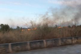 Controlado un incendio en Campos