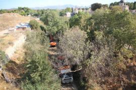 Cort solicitará al Govern el coste de la limpieza del torrente de Sa Riera