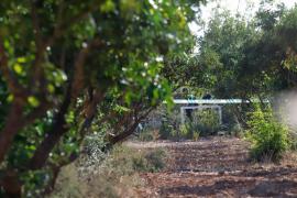 Éstas son las 7 personas fallecidas en el accidente aéreo en Mallorca