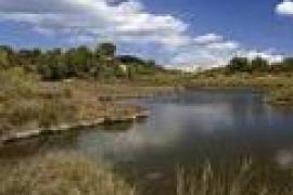 L'aigua i l'acció humana a s'Albufera