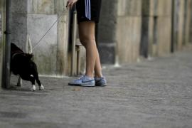 Denuncian a 395 dueños de perros en Palma, sobre todo por llevarlos sueltos