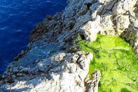 Vista del acantilado por el que cae el agua vertida
