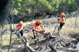 Una quincena de voluntarios participan en la recuperación ambiental de sa Talaia