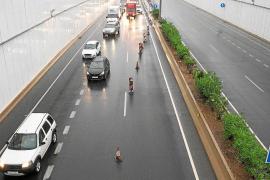 Las lluvias provocan cortes y atascos en las carreteras de Ibiza
