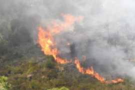 Los incendios forestales han quemado más de 100 hectáreas en Baleares en lo que va de año