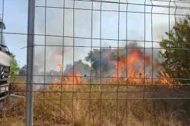 Un hombre de 74 años, detenido por quemar varios solares del Secar de la Real