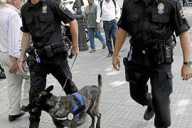 Un informe pide suprimir la Unidad Canina de la Policía Local de Palma