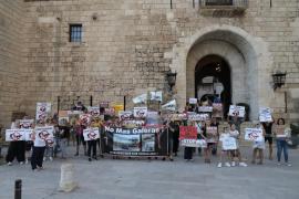 Actúa se concentra contra el maltrato animal en Palma