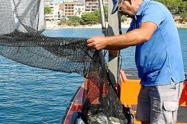 Retirados 700.000 kilos de plásticos del mar en 15 años en Baleares