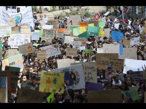 Miles de personas plantan cara al cambio climático en Palma