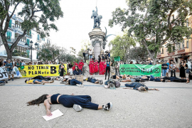 Medio millar de personas marchan en Ibiza en la huelga mundial por el clima