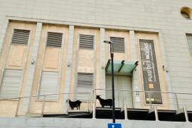 ¿Qué hacen dos cabras a las puertas del Museo de Puig des Molins?