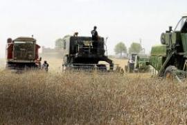 Agricultura tiene pendiente de pago más de mil subvenciones de la pasada legislatura