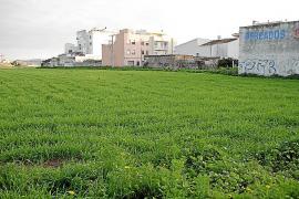 El Govern da vía libre a la urbanización de Son Bordoy que el PP tildó de «pelotazo»