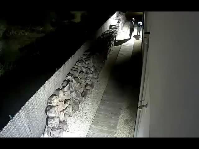 Detienen a una banda de siete hombres que ha perpetrado 150 robos en Mallorca