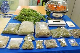 Prisión para los dos detenidos con un laboratorio de marihuana