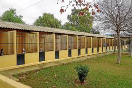 Centro Municipal de Protección Animal de Son Reus