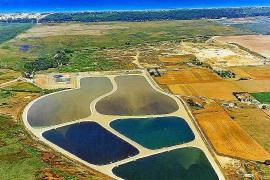 El Govern y el Gobierno central avalan el proyecto de la depuradora de Can Picafort