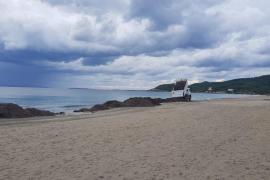 Sant Josep inicia los trabajos para devolver la posidonia retirada a las playas