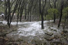 Las fuertes lluvias en Mallorca hacen brotar las Fonts Ufanes
