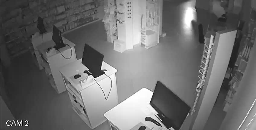 Detenido por 15 robos en tiendas de Campos, la Colònia y Ses Salines