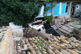 Daños en un vehículo y en unas viviendas de Llucmajor por la caída de una palmera