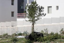 Los daños del tornado de Sant Antoni, una semana después. Fotos: Arguiñe Escandón