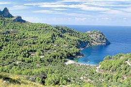 El Consell de Mallorca modifica sus cuentas para pagar casi 8 millones en sentencias