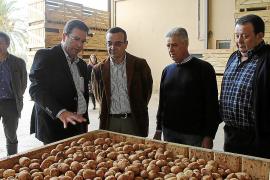 Los exportadores de patatas no pueden satisfacer la demanda de los mercados
