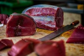 Los peligros del mercurio: ¿Qué pescados no deben comer las embarazadas y los niños?