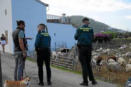 Denuncian el intento de atropello del corresponsal de 'Ultima Hora' en Andratx