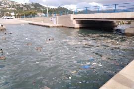 El mar de plástico de los patos de Andratx