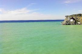 Costas ve 'normal' que el agua del Port de Sóller se enturbie después de un recrecimiento